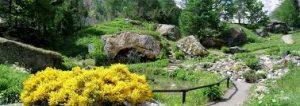 gairdini botanici in valle d'aosta