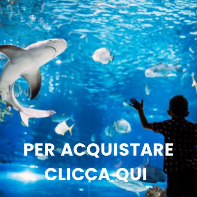 Acquario di Genova: impara ad amare il mare divertendoti!