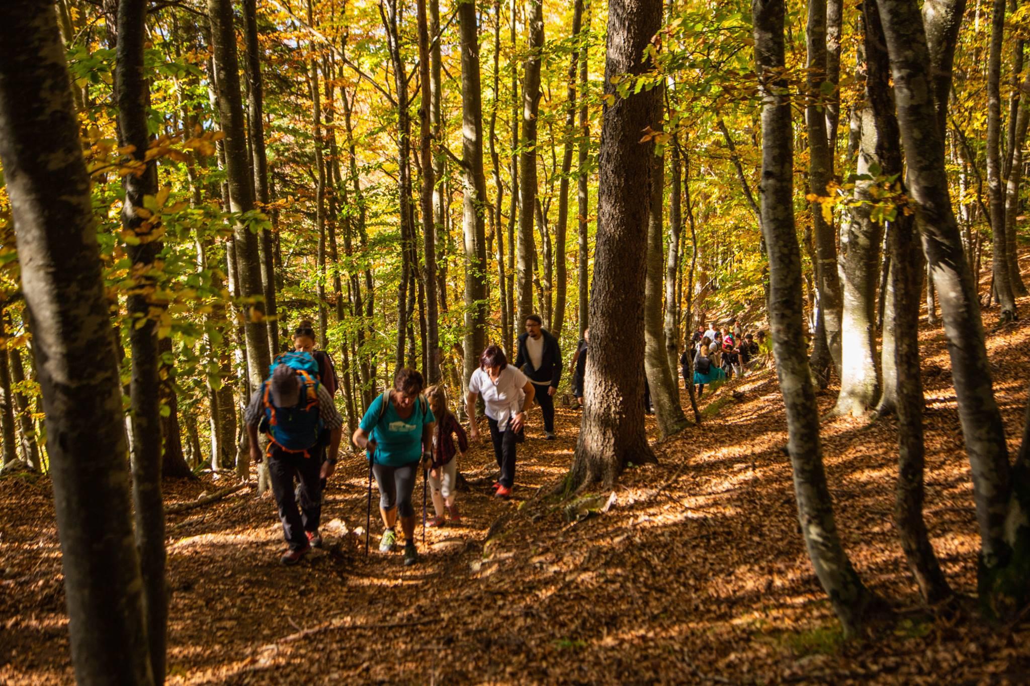 Dall'8 al 10 ottobre: Family Week-end nella Storia in Alpe Cimbra!
