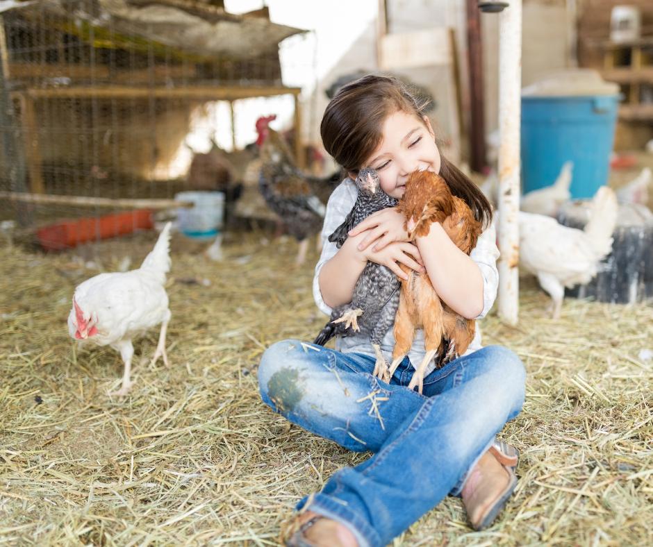 Fattore per un giorno: vivi l'esperienza della vera fattoria!