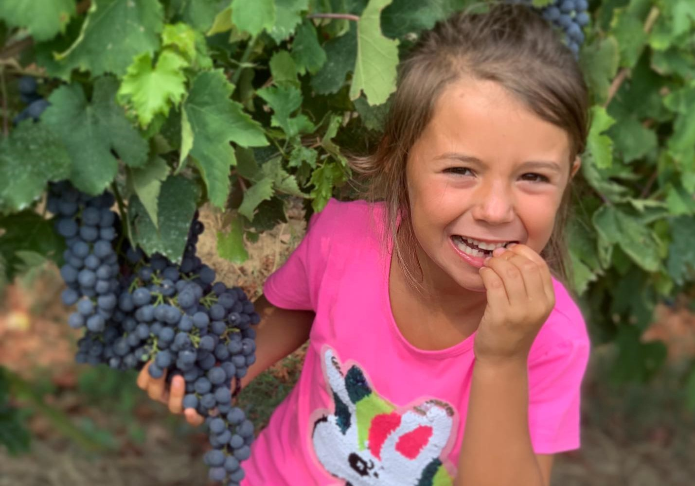 Pigiatura dell'uva e Pic-nic in famiglia!